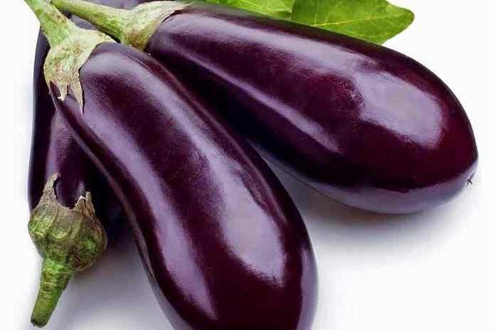 manfaat terong ungu