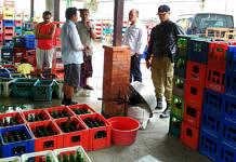 Dinas Satpol PP dan Pemadam Kebakaran (Damkar) Kabupaten Bangli menutup tempat usaha produksi minuman temulawak di Banjar Petak, Kelurahan Bebalang, Bangli. Penutupan dilakukan lantaran selama berproduksi, tempat usaha tersebut tak mengantongi izin dari pemerintah.