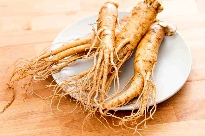Atrophie testiculaire GINSENG