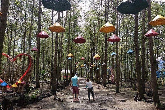 Dulu Kumuh Hutan Ampupu Kini Instagrammable Balipost Com