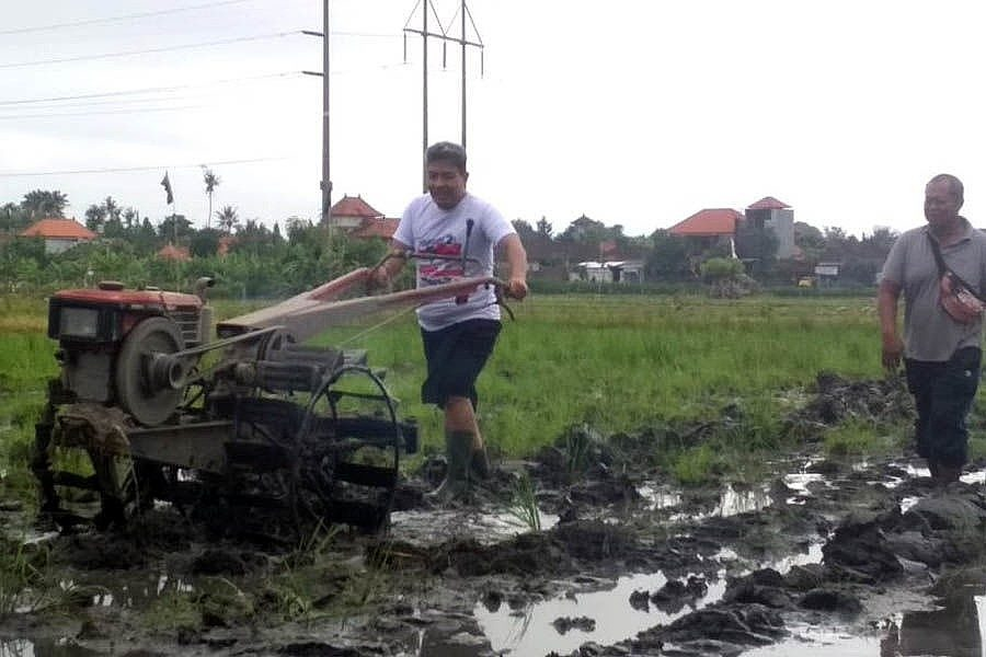 Paket Amerta Komitmen Kembangkan Eksistensi Pertanian,Wujudkan Kota Denpasar Berbudaya 1